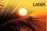 Ladja groupe Caraibéen/ Latino