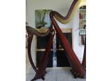 Cours de harpe - Chazelles-sur-Lyon et alentours
