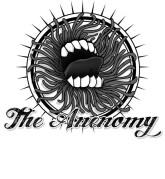 The Anenomy cherche son nouveau chant