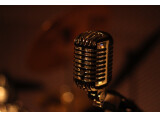 Studio Wasteland Records recherche partenariats.