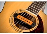 Tim Shaw a conçu deux micros de rosace pour Fender