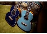 Un ukulélé signature Dhani Harrison chez Fender