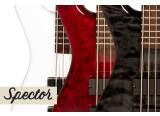 Une nouvelle basse 5 cordes chez Spector