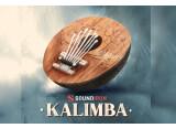 Découvrez la banque de sons Kalimba, par Soundiron