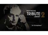 Une V2 de la Bob Moog Tribute Library pour ses 10 ans