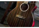 Nouvelle série de guitares folks chez Washburn : Deep Forest