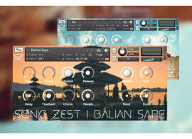 Deux nouvelles banques de sons pour le prix d'une chez SonicZest