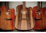 La série Custom Line de Harley Benton accueille 9 nouvelles guitares
