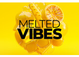 Native Instruments ajoute Melted Vibes à la Play Series