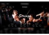 Voici Strings Ensemble, la nouvelle banque de sons de Muze