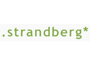Strandberg Boden Fusion 6 Neck-Thru