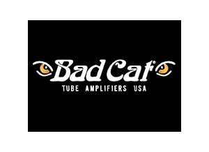 Bad Cat Hot Cat 100 Head