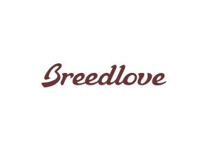 Breedlove Revival Deluxe OM-M
