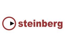 Steinberg Magneto