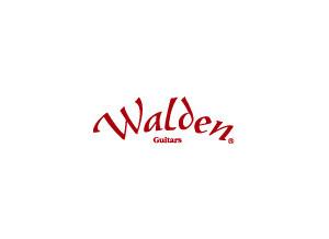 Walden Walden T550CE