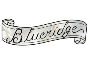 Blueridge BD-16 B