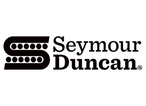 Seymour Duncan Custom Shop Pearly Gates Humbucker Set
