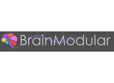 BrainModular