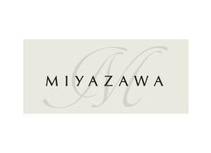 Miyazawa Flute Professionnelle Type I