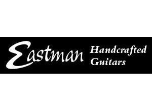Eastman E20OM