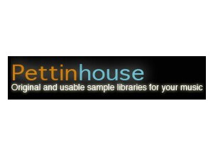 Pettinhouse Direct Guitar