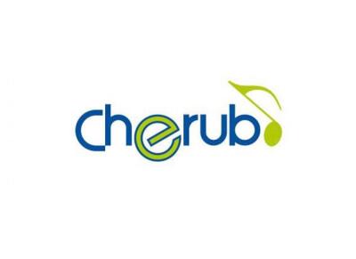 Cherub Technology