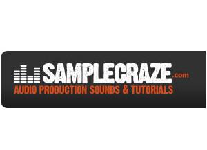 Samplecraze 1-2-1 Personal Tuition Courses