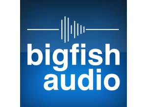 Big Fish Audio nu jazz city
