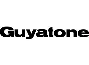 Guyatone Blues