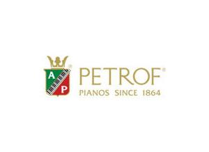 Petrof Storm 194