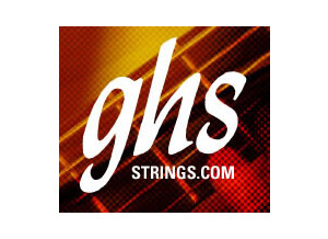 GHS Precision Flat Bass Strings