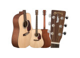 Martin & Co Lady Liberty Limited Edition Acoustic Guitar