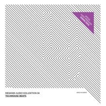 Sound To Sample Riemann Kollektion 4 - Tech House Beats
