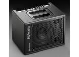 AER Alpha Plus 50W Amp