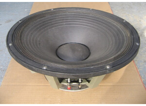 Electro-Voice EVM-15L