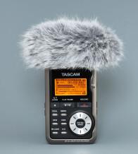 Tascam WS-DR2