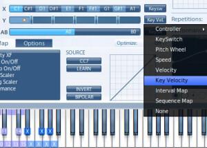 VSL (Vienna Symphonic Library) Vienna Instruments Pro