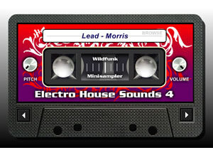 Wildfunk Electro House Sounds 4