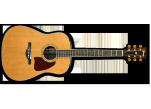 Ibanez AW35R