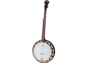 Deering Classic Goodtime Two Banjo