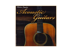 Motion Samples Acoustic Guitar Loops