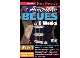 Lick Library Steve Trovato's American Blues in 6 Weeks