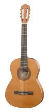 Hofner Guitars HZ 23