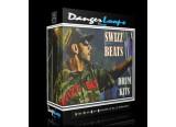 DangerLoops Swizz Beatz