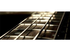Cinematique Instruments Bowed Guitars