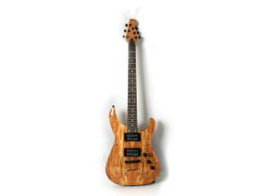 WSL Guitars Equilibrium Spalted