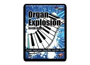 Nine Volt Audio Organ Explosion: 9V-B3 Edition
