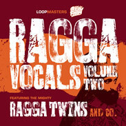 Loopmasters Ragga Twins Vocals Vol2