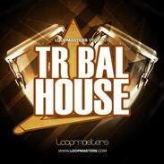 Loopmasters Tribal House
