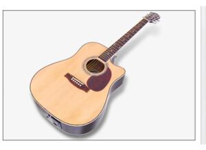 Jammin Pro USB Acoustic 505